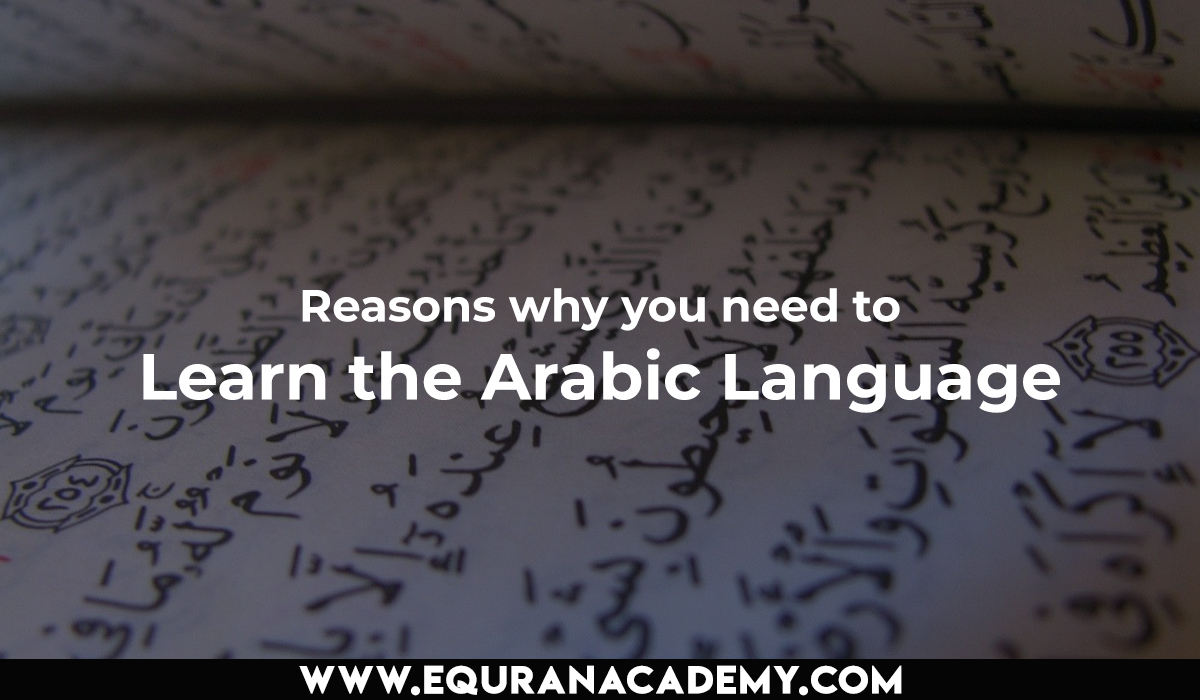 Reasons why you need to Learn the Arabic Language